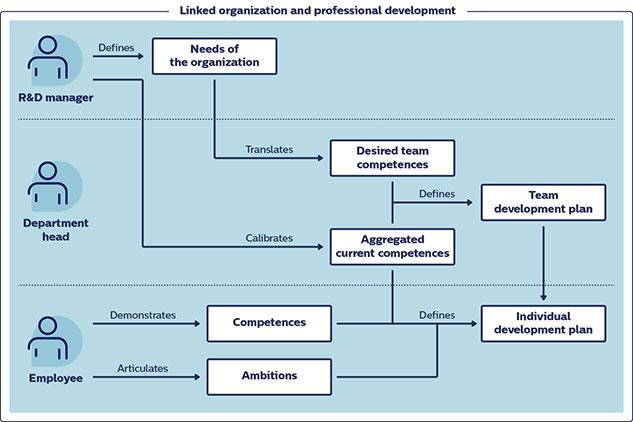 Linked organization and professional development